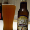 Sam Adams Blackberry Witbier